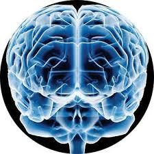 Curso Neurociência Coach